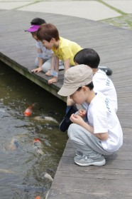 Having fun feeding the fishies