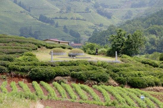 Grave sites and green tea = Korea