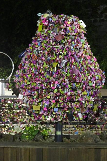 A tree of love locks
