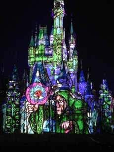 "Cinderella's Castle during the ""Once Upon a Dream"" show! -we won seated tickets to it!"