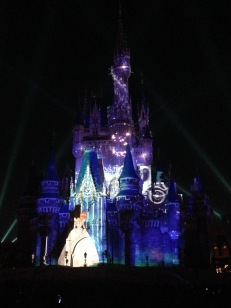 "Cinderella's Castle during the ""Once Upon a Dream"" show!"