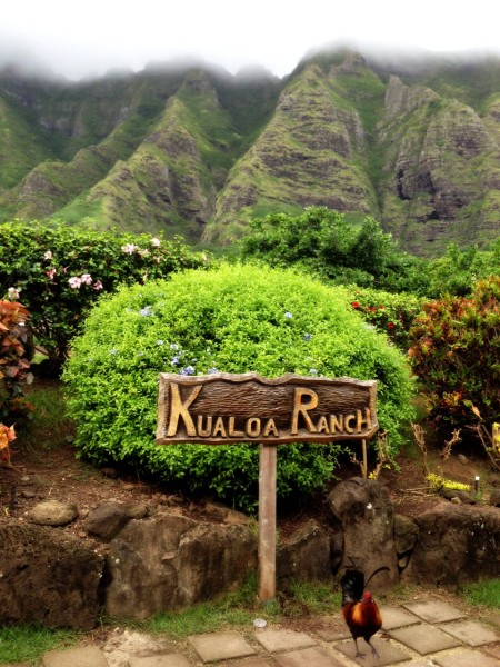 Welcome to Kuala Ranch -
