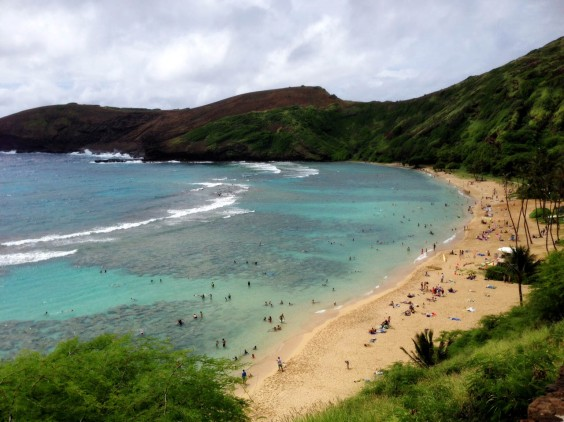 Beautiful Hanauma Bay - check out the reef!